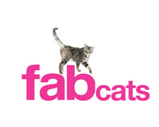 fab cats
